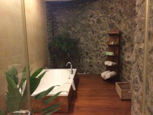 シッダレパ アーユルヴェーダ ヘルス リゾートの風呂