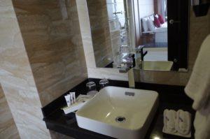 ヒマラヤンフロントホテルの洗面台